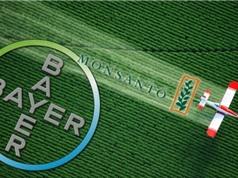 Bayer-Monsanto: Một đám cưới, một đám ma, một viên đạn