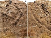 Dấu chân hóa thạch lâu đời nhất thế giới tại Trung Quốc