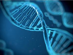 Mỹ muốn lưu trữ dữ liệu tình báo trên máy tính DNA