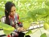 Giải pháp KH&CN giúp phát triển nông nghiệp quy mô lớn vùng Bắc Trung Bộ