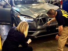 """Điều hành viên xe Uber tự lái đang...xem """"The Voice"""" trước khi xảy ra tai nạn"""