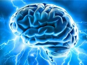[Infographic] Những điều thú vị về bộ não người