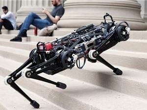 """""""Robot mù"""" của MIT có thể chạy, leo trèo cầu thang thành thạo"""