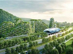 """Trung Quốc sẽ xây dựng hàng trăm """"thành phố rừng"""" vào 2025"""