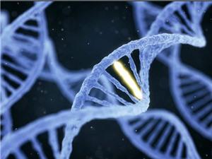 Công nghệ 'điều chỉnh' gen giúp tăng sức đề kháng của cơ thể