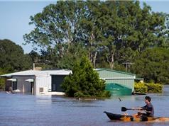 Australia chế tạo thành công loạt thiết bị cảnh báo lũ lụt