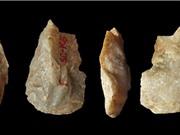 Tổ tiên loài người đã xuất hiện ở châu Á từ hơn 2 triệu năm trước?