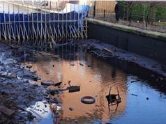 Một vật liệu mới có khả năng hấp thụ các chất ô nhiễm hữu cơ trong nước