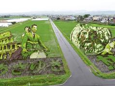 Có một cánh đồng lúa đặc biệt chuyên tạo ra các nhân vật hoạt hình nổi tiếng ở Nhật Bản
