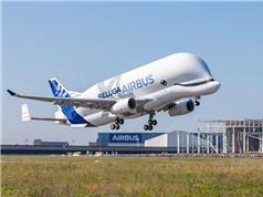 Airbusthử nghiệm loại máy bay mới hình cá voi