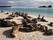 Quần đảo Galápagos: Phòng thí nghiệm Thuyết tiến hóa sinh học