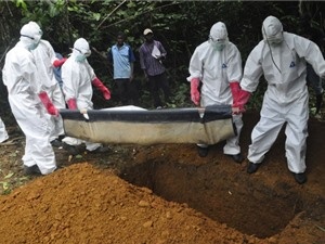 Phát hiện chủng mới của virus Ebola khét tiếng