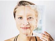 Thuốc chống lão hóa giúp tăng cường hệ miễn dịch cho người lớn tuổi