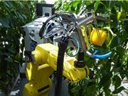 [Video] Robot ''nông dân'' thu hoạch nông sản ấn tượng