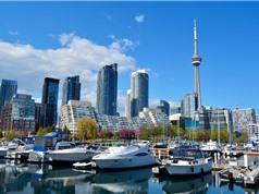 Ontario ngừng chương trình thu nhập căn bản chỉ sau một năm thử nghiệm