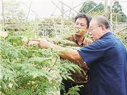 Cần chuyển sang hệ thống đổi mới nông nghiệp