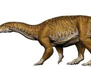 Hóa thạch của loài khủng long khổng lồ đầu tiên trên thế giới