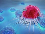 Thuốc ngừa ung thư BXQ-350 chứng minh được hiệu quả