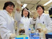 Nỗ lực giảm bất bình đẳng giới trong khoa học Trung Quốc