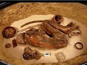 Thêm một điều kinh ngạc về nền văn minh Ai Cập cổ đại