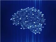 Nghiên cứu mới có thể thay đổi cách trị liệu bệnh động kinh