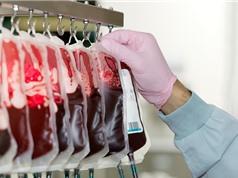 Bước nhảy vọt của y học: Giới khoa học tìm ra cách chuyển nhóm máu A thành nhóm máu O