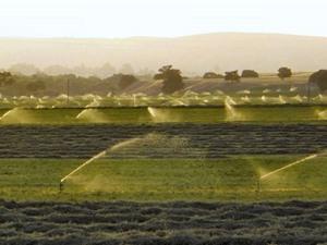Hệ lụy từ các chương trình tiết kiệm nước tưới nông nghiệp