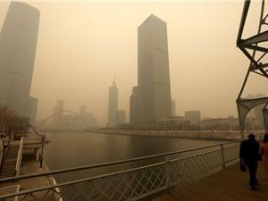 Ô nhiễm không khí làm giảm tuổi thọ dân số  toàn cầu ít nhất một năm