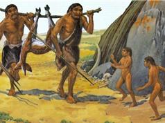Người Neanderthal bị tuyệt chủng do khí hậu lạnh