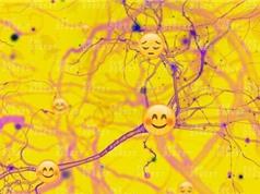 Thiết bị đo sóng não để hiểu tâm trạng con người
