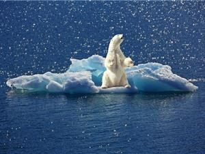 Liên Hiệp Quốc: Thế giới phải hành động mạnh mẽ hơn nữa trước năm 2020 nếu không muốn biến đổi khí hậu thêm tồi tệ