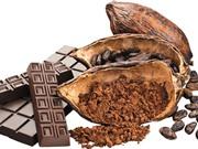 Lịch sử cổ xưa của chocolate, quà tặng của các vị thần