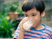Uống sữa làm gia tăng dịch nhầy đường hô hấp?