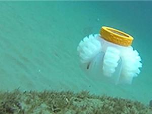 Mỹ phát triển robot sứa để nghiên cứu môi trường biển