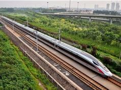 Đường sắt cao tốc: Một số sự thực nhãn tiền