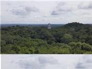 Phát lộ dấu tích nền văn minh Maya dưới tán rừng ở Guatemala