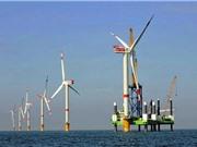 Phát triển thị trường điện gió tại Việt Nam: Những tín hiệu tích cực