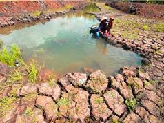Thủy điện có thể giết chết sông Mekong