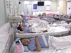 Cách tiếp cận Một sức khỏe tại Việt Nam