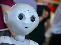 Một robot sắp tham gia điều trần trước Nghị viện Anh