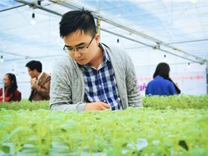 Khánh thành Nhà nhân giống khoai tây sạch bệnh bằng công nghệ 4.0 và trao học bổng Khoai tây quê hương
