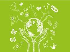 Những nỗ lực hồi sinh môi trường trên bình diện toàn cầu