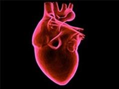 Mỹ bào chế được thuốc cứu mô tim bị đói oxy