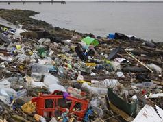 Nghị viện Châu Âu đề xuất cấm hoàn toàn đồ nhựa dùng một lần vào năm 2021