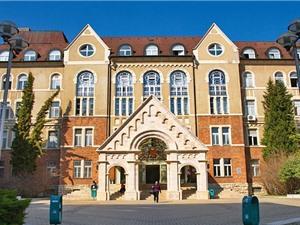 Đại học trẻ có thể là đại học xuất sắc ?