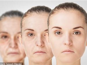 Lý giải được nguyên nhân khiến cơ thể con người bị lão hóa