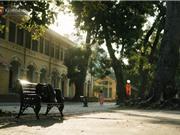 Ngôi trường lâu đời nhất Hà Nội - 110 năm qua vẫn vẹn nguyên vẻ đẹp yên bình, rêu phong và thách thức thời gian