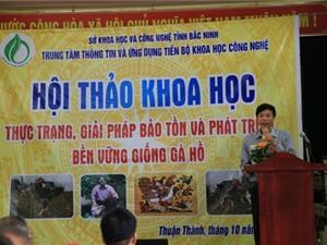 Bắc Ninh: Thực trạng, giải pháp bảo tồn và phát triển bền vững giống gà Hồ