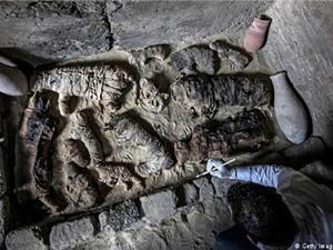 Phát hiện nhiều xác ướp mèo, bọ hung trong mộ cổ Ai Cập nghìn năm tuổi