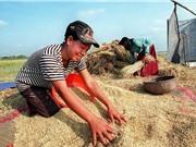 Campuchia thí điểm dùng Blockchain giúp nông dân tiêu thụ sản phẩm